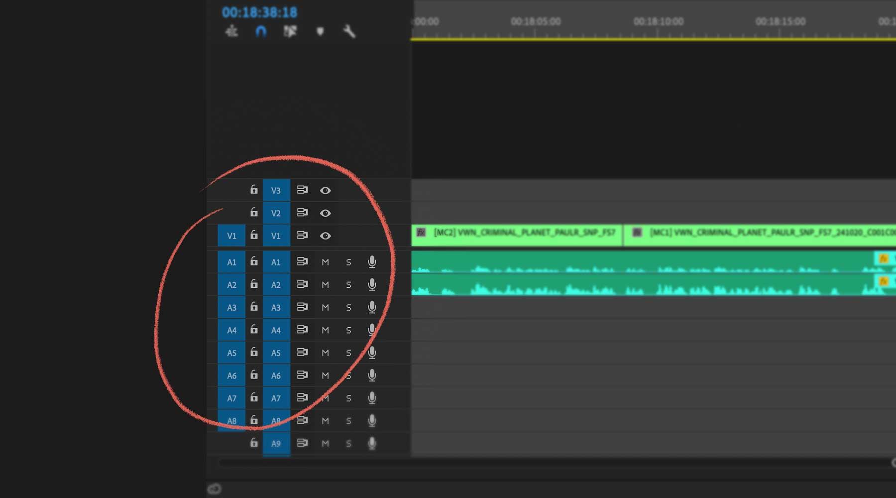 Premiere-pro-track-controls